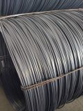 Steel Wire Rod for Cold Drawing Nail Making (SAE1006 SAE1008)