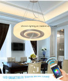 Interior Hot LED Music Products with Ceiling Pendant Light