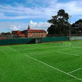 Mini Aquarium Football /Golf /Soccer Cheap Carpet Artificial Synthetic Grass