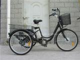 Three Wheels Electric Bike for Adult