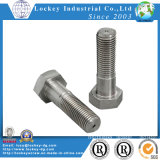 Stainless Steel Hex Bolt Hex Screw with Hex Nut and Flat Washer