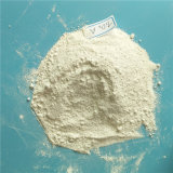 White Powder Titanium Dioxide Rutile/Anatase for Plastic or Painting Industry