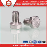 Stainless Steel Full Thread Bolt DIN933
