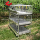 Used Poultry Cages for Growing Broilers for Sale