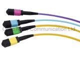 12f MPO-MPO Patchcord Jumper Optical Fiber Connector Ribbon Cable Sm mm