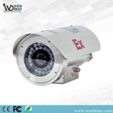 304 Stainless Steel Explosion-Proof Mini HD IP Camera