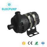 Automative DC Pump