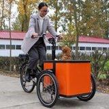 Flexible Cargo 3 Wheel Motorized Family Bike for Pet and Children