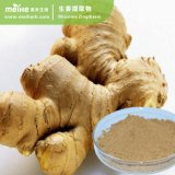 100% Natural Ginger Extract