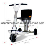 Good Price Three Wheel Folding Electric Mobility Scooters for Disabled