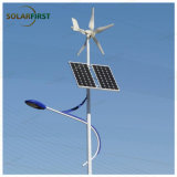 50W Wind and Solar Hybrid Solar Street Light