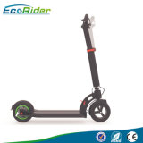 8.5inch Wheel Brushless Gear Motor 36V 300W Foldable Electric Scooter