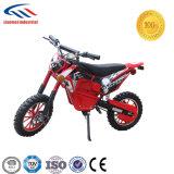 500W Powerful Electric Dirt Bike Quad for Kids Use