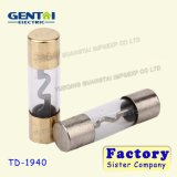 Hot Sale Golden Plated Glass Power Fuse/Glass Car Fuse
