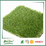 Easy Replacing Christmas Decorative Fake Synthetic Lawn for Pets/Garden/Landscaping