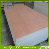 3mm/4mm/5mm Hot Sale Bintangor Face Commercial Plywood with High Quality