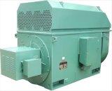 Yrkk Series Slip Ring High Voltage Asynchronous Electric Motor 11kv