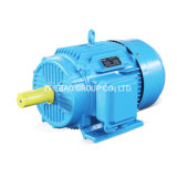 Ie2 Cast Iron Three Phase AC Electric Motor