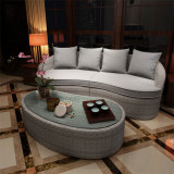 Modern Fashion Rattan Sofa Outdoor Leisure Garden Sofa S391
