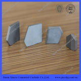 Good Price Coal Mining Inserts K10 Tungsten Carbide Tips