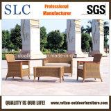 Modern American Style Rattan Sofa Set /Garden Sofa (SC-B1002)