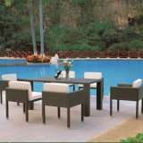 Garden Rattan Dining Chairs and Table Outdoor Dining Set (TG-JW63)