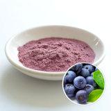 Zelang Supplu Natural Blueberry Juice Powder Blueberry