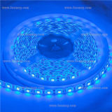 Firstlight DC 12V Flexible Light RGB LED Strip