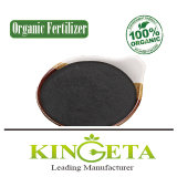 Organic Chemical Fertilizer Fortified Fertilizer Utility