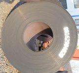 Alloy Steel Plate/Coil/Strip/Sheet Ss400