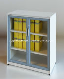 Metal Glazed Swing Door Cabinet