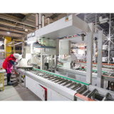 Final Products Inspection Systems Convey Line for Fired Products