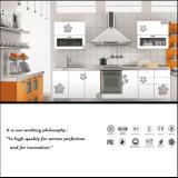 Fire-Proof E1 Grade New Design Best Price Kitchen Cabinet (ZH-6018)