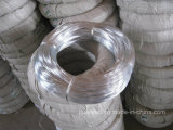 Cheap Pirce Q195 Low Carbon Steel Electro Galvanized Iron Wire 3mm