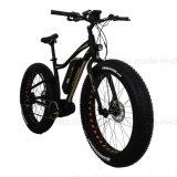 "26"" Crank Motor Beach Snow Electric ATV Fat-Bike (TDE10Z-3)"