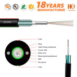 Outdoor Unitube Light-Armored Fiber Optic Cable GYXTW
