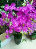 Artificial Flowers of Orchid 109cm Gu922220407