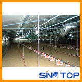 Automatic Chicken Farm Equipment Manufacturers China