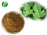 Manufacturer Supply Pure Hawthorn Leaves Extract Flavones CAS 36052-37-6