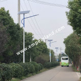6m 40W Solar LED Street Light with Control System (DZS-06-40W)