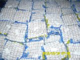 New Crop Pure White Garlic 250g Small Bag