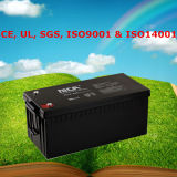 Good Quality 12V Marine Battery Rechargeable Battery 12V 220ah
