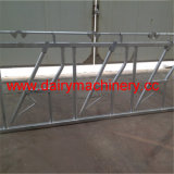 Farm Hot Dipped Galvanized Steel Cow Head Lock