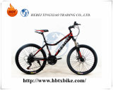 "Hot Sale New Design 21 Speeds 24"" Mountain Bike"