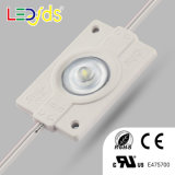 1PCS 2W DC12V Waterproof 3030 SMD Injection LED Module