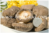 Natural Healthy Food Dried Smooth Mushroom