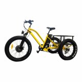 24 Inch Electric Trike Fat Tire 3 Wheel Electric Tricycle Three Wheels Adult Cargo Electric Bike with Basket Mz-379