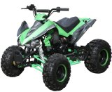Electric Kids 50cc 110cc 125cc Mini Kids ATV for Child