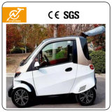 Smart Control 2 Seater Mini 4 Wheels Auto Electric Car