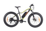 Mountain Snow E-Bike with Fat Tire